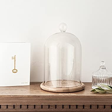 Glass Cloche Bell Jar Display Dome with Bamboo Base - 9  x 6
