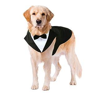 Kuoser Dog Tuxedo Dog Suit and Bandana Set, Dogs Tuxedo Wedding Party Suit, Dog Prince Wedding Bow Tie Shirt Formal Dog Weeding Attire for Large and Medium Dogs Golden Retriever Samo Bulldogs XL