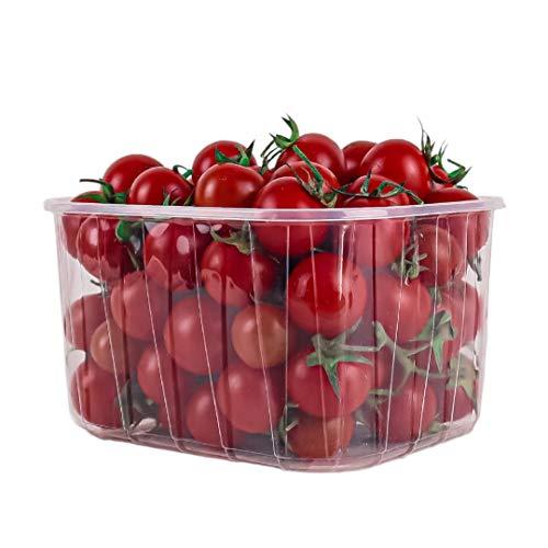 Vaschette in Plastica in PP mm 170x135x95 Contenitore da 1 Kg Per Frutta ed Ortaggi Pezzi 804