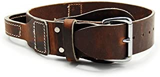 Brown Leather Collar with Handle