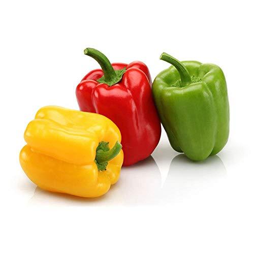 Semillas de pimiento ornamentales coloridas Semillas de pimiento colorido Chaotian Pepper Millet Spicy 300 cápsulas