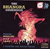 The Bhangra Dimension (A Bhangra and Ragga Fusion)