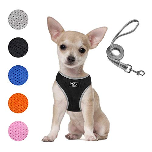 Puppy Harness and Leash Set - Dog Vest Harness for Small Dogs Medium Dogs- Adjustable Reflective Step in Harness for Dogs - Soft Mesh Comfort Fit No Pull No Choke (XS, Black)