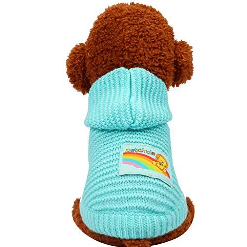 Huisdier kleding Delicate Poeder/Blauw/Geel/XS/S/M/L Hond Herfst Puppies Kleine Leeuw Trui Schoon