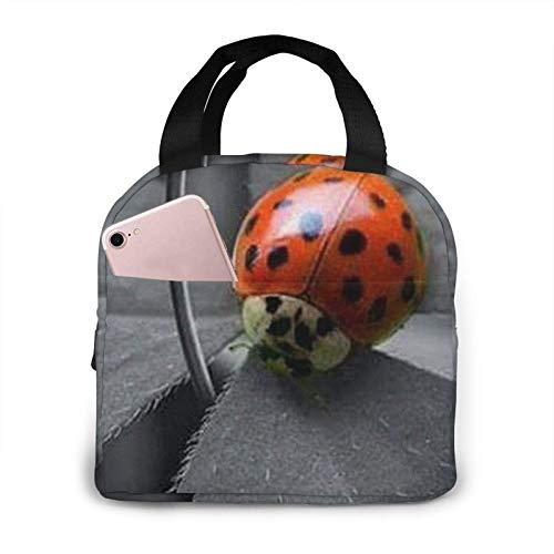 N\A Bolsa de Almuerzo Ladybug Daisy Bolsa de Almuerzo con Aislamiento Reutilizable Bolsa de Almuerzo Caja de Almuerzo