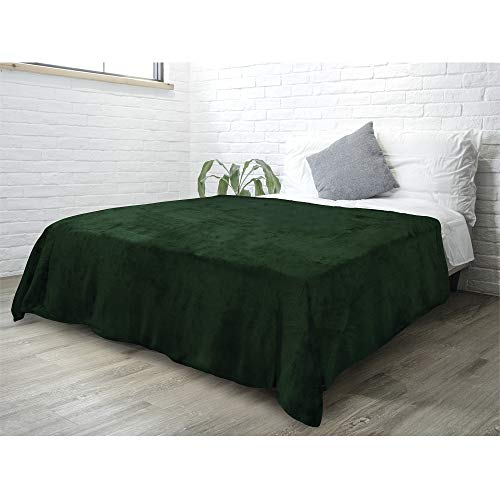PAVILIA Fleece Blanket Queen Size | Super Soft, Plush, Luxury Flannel Throw | Lightweight Microfiber Blanket for Sofa Couch Bed (Emerald Green, 90x90 inches)