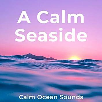 A Calm Seaside