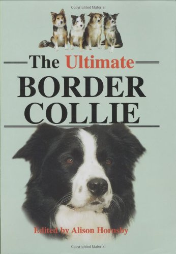 The Ultimate Border Collie