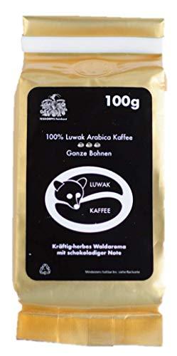Kopi Luwak Kaffee - einzigartige Feinkostspezialität aus Indonesien von frei lebenden Luwakkatzen - Katzenkaffee, das perfekte Weihnachtsgeschenk! (100 GR geröstete Bohnen (roasted beans))