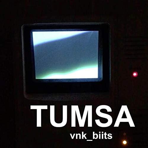 vnk_biits