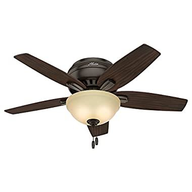 Hunter 51081 Newsome Ceiling Fan with Light, 42 /Small, Premier Bronze