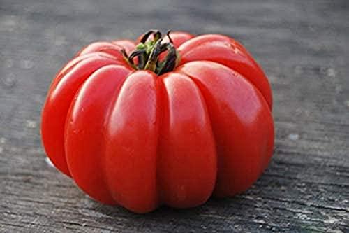 40 piezas Semillas de tomate Garden Farm Variedad exótica rara Semillas de hortalizas de herencia sin OMG
