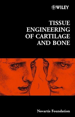 Tissue Engineering of Cartilage and Bone: 249 (Novartis Foundation Symposia)