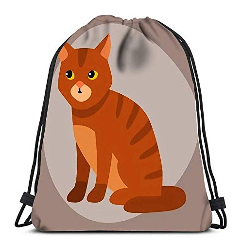JDHFJ Bolsa con cordón Drawstring Backpack Cat Breed Cute Pet Portrait Fluffy Young Adorable Cartoon Animal and Pretty Fun Play Durable for Carrying Around