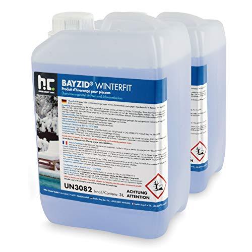 Höfer Chemie 2 x 3 L Pool Wintermittel - BAYZID Winterfit Überwinterungskonzentrat für Schwimmbad und Pool
