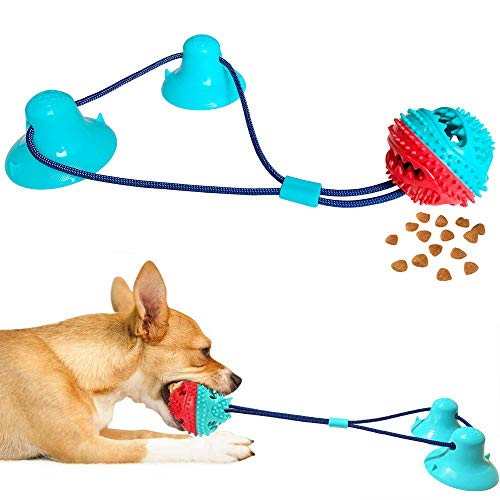 Dog Chew Suction Cup Tug of War Toy Dog Toys Teething Toothbrush Tug...