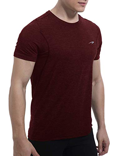 Men's Dry Fit Moisture Wicking Athletic T-Shirt Short Sleeve Running Workout Shirts for Men(Burgundy,XL)