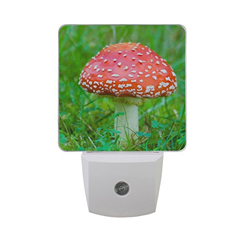 Naanle Set of 2 Toadstool Red Fly Agaric Mushroom in Green Grass Spring Woodland Auto Sensor LED Dusk to Dawn Night Light Plug in Indoor for Adults