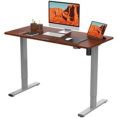 Flexispot EG1 Standing Desk 48 x 24 Inches Height Adjustable Desk Electric Sit Stand Desk Home Office Desks Vici (Gray Frame + Mahogany Top)
