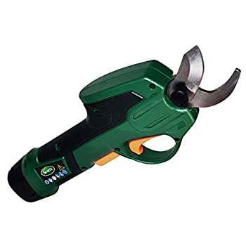 Scotts Outdoor Power Tools PR17215S 7.2-Volt Lithium-Ion Cordless Rechargeable Power Pruner Green