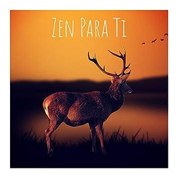 Zen para Ti
