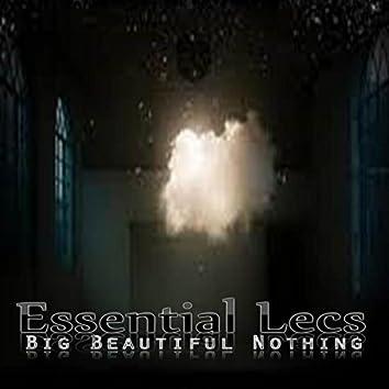 Big Beautiful Nothing