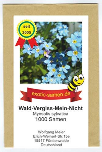 Wald-Vergiss-Mein-Nicht - Myosotis sylvatica - Bienenweide - 1000 Samen