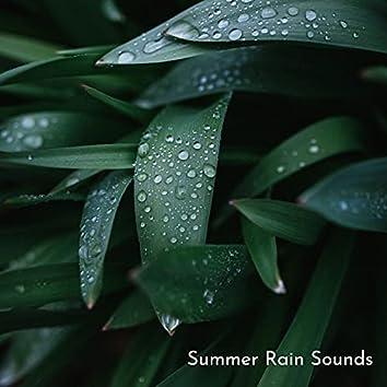 Summer Rain Sounds