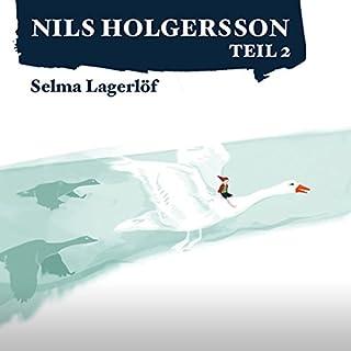 Die wunderbare Reise des kleinen Nils Holgersson mit den Wildgänsen 2 Titelbild
