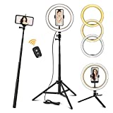 Ring Light 10.2' with 62'' Upgraded Tripod Stand/Phone Holder/Remote Control, Maxztill Dimmable Halo Light for Live Stream/YouTube Video/Selfie Photography/Makeup, Compatible with iPhone/Android