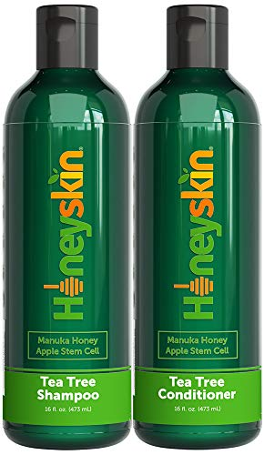 Organic Tea Tree Oil Shampoo Conditioner Set - Manuka Honey, Stem Cell & Coconut - Dandruff & Scalp Flake Treatment - Soothes Itchy Scalp Deep Hydrating - Paraben & Sulfate Free - Made in USA (16oz)