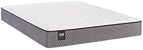 Top 10 Best sleep master icoil 13 inch euro top spring mattress Reviews