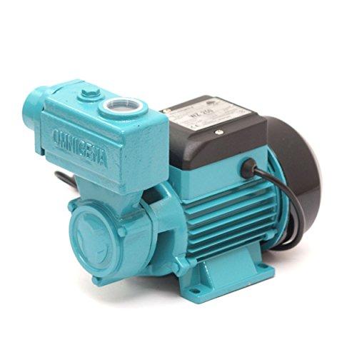 Kreiselpumpe Gartenpumpe 250 Watt 2100 L/h 3,3 bar Wasserpumpe Hauswasserwerk