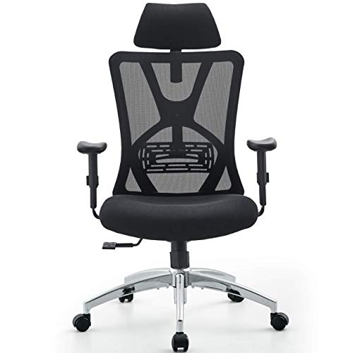 Ticova Ergonomic Office Chair - High Back Desk ...