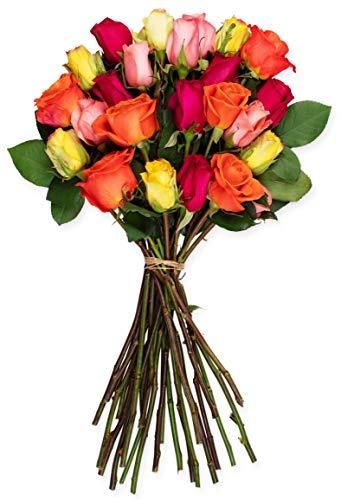 Benchmark Bouquets 2 Dozen Rainbow Roses, No Vase (Fresh Cut Flowers)