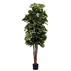 "Rising high and finishing in an explosion of leaves, this 72"" fiddle leaf fig tree is the perfect way to bring the forest indoors, without worrying about sunlight or watering. It's an impressive offering, standing six feet tall, and is ideal for a ho..."