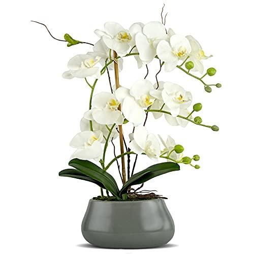 ikea levande blommor