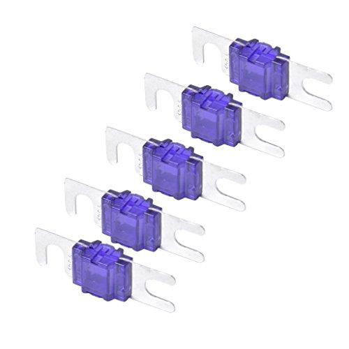 LOVIVER 5 Piezas ANL Fork Fuse Kit Disyuntor de Audio para Automóvil - Morado 100A