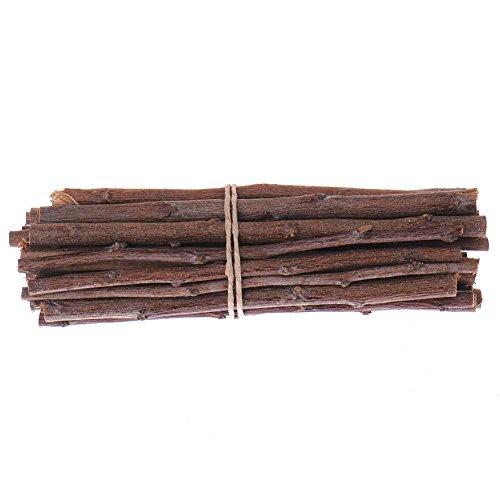 Ardilla Árbol Ramas Masticar Juguetes de madera para hámster rata, ratón pequeños animales