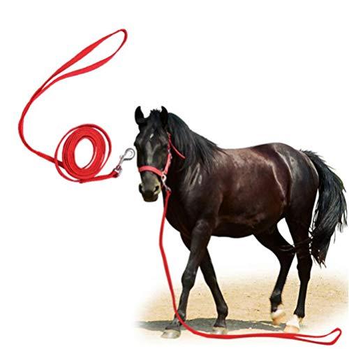 tytuoling Redini Regolabili per Cavezza per Cavalli,Attrezzatura per L'Equitazione Briglia per Cavallo con Punte E Cinghia di Rinforzo Fissa,Dura E Resistente Non Temprata in Inverno 3M