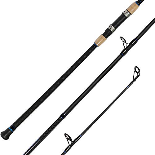 Fiblink 2-Piece Surf Casting Fishing Rod Carbon Fiber Travel Fishing Surf Rod (2-Piece, 9-Feet (Casting))