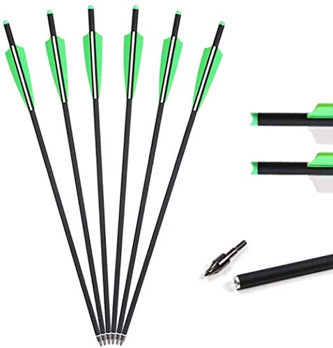 TRUELYS Crossbow Bolts 20 Inch Crossbow Arrows with 4' Vanes for Hunting and Target Shooting 20 in Crossbow Carbon Bolts (6 Pack)