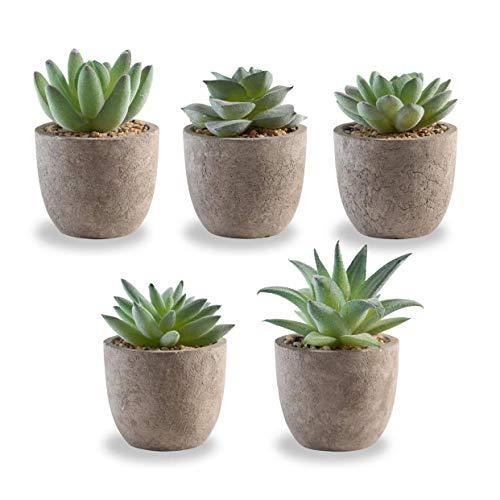 Korvea Set of 5 Artificial Succulent Plants - Mini Assorted Fake Succulents -...