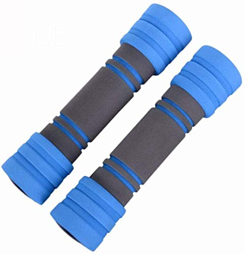 Für alles dankbar Damen Hantel Paar Home Fitness Anfänger üben Arm Muskel Gewichtsverlust Abnehmen Gewichtsverlust Ausrüstung Aerobic Kleine Hanteln(Size:2 kg,Color:Blau)