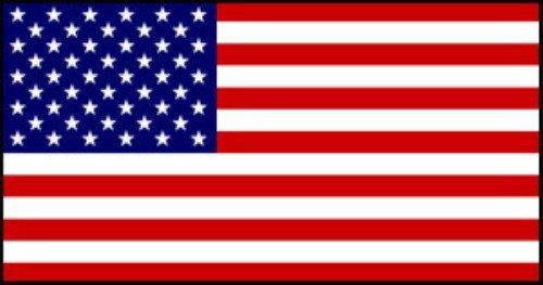 Flag Bunting (8 pieds, le papier de qualité) - USA (Stars & Stripes) [Jouet]