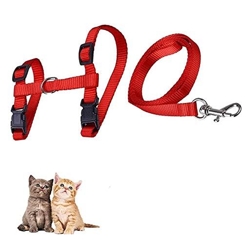 Arnés y Correa para Gato, Collar Ajustable Antiescape, Juego Arnés y Correa Pecho, para Mascotas Pequeño y Gatito Caminata al Aire Libre