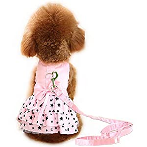 Hdwk&Hped Small Dog Dress with Leash Ring, Puppy Cat Walking Dress Pet Skirt 2 Styles #1-#5 (#4, Star Style – Pink (2-Pack))