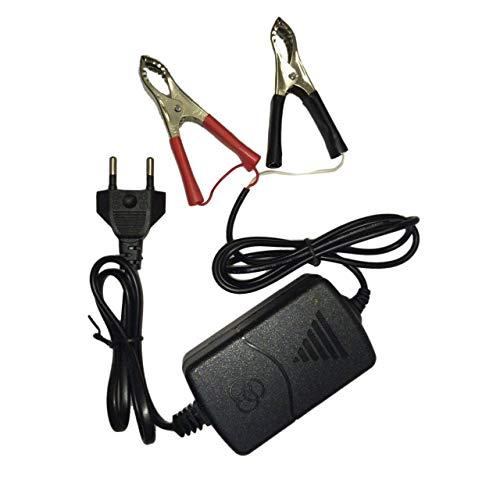 Easyeeasy Auto Coche Motocicleta ATV DC 12V / 1A 15W Cargador de batería recargable multimodo portátil Universal Tender Maintainer
