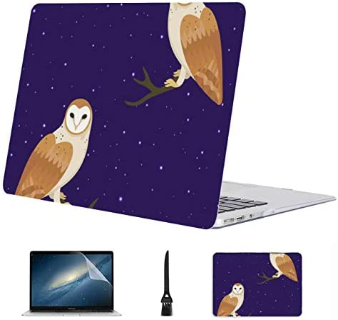 MacBook Air Protective Cover Owl Animal Big Eye Animal Night Plastic Hard Shell Compatible Mac product image