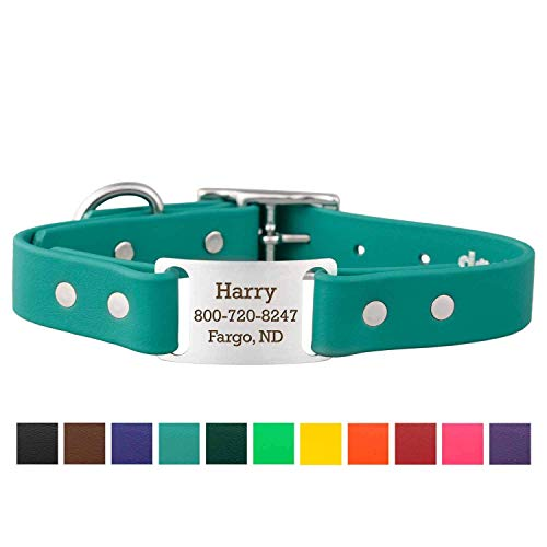 dogIDS Personalized Waterproof Dog Collar - Adjustable, Odor Resistant, Built-in Custom Laser Engraved ScruffTag Name Plate - Teal, 1 in x 18 in (Fits Neck Sizes 16-20 in)